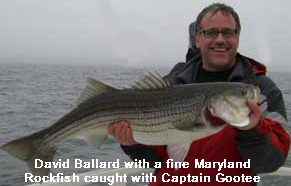 Maryland Striper (Rockfish)